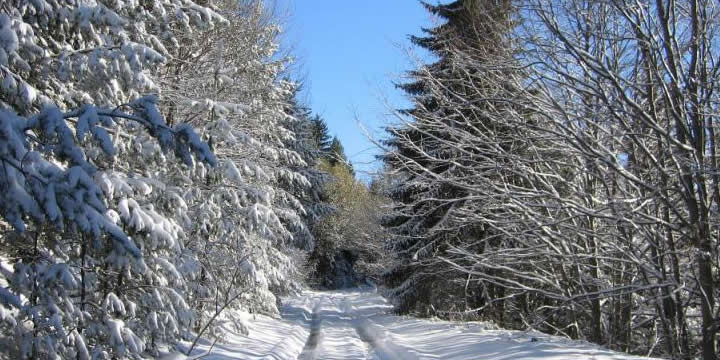 The road to Chamkoria Chalets after a heavy snow fall